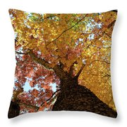 Autumn Rainbow Throw Pillow