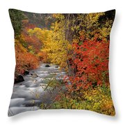 Autumn Rapids Throw Pillow