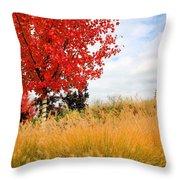 Autumn Red Maple Throw Pillow