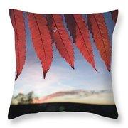 Autumn Red Sumac Leaves Throw Pillow