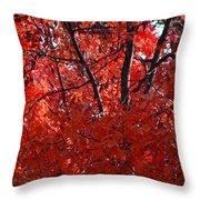 Autumn Red Trees 2015 Throw Pillow