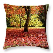 Autumn Reds Throw Pillow