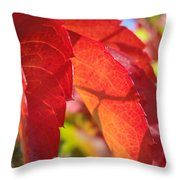 Autumn Reds Throw Pillow