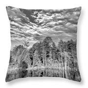 Autumn Reflection 2 Bw Throw Pillow