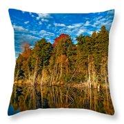 Autumn Reflection II Throw Pillow
