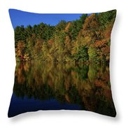 Autumn Reflection Of Colors Throw Pillow