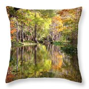 Autumn Reflection On Florida River Throw Pillow by Carol Groenen