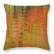 Autumn Reflections Abstract Throw Pillow