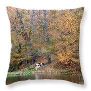Autumn Reflections Cow Farm Throw Pillow