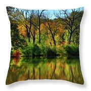 Autumn Reflections On Salt Creek IIi Throw Pillow