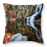 Autumn Refletions Throw Pillow