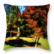 Autumn Refraction Throw Pillow