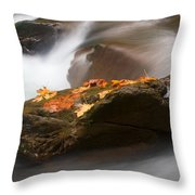 Autumn Resting Place Throw Pillow