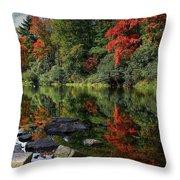 Autumn River Landscape Throw Pillow
