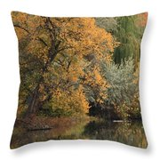 Autumn Riverbank Throw Pillow