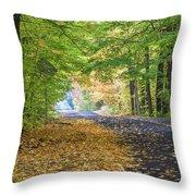 Autumn Road 2 Throw Pillow