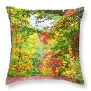 Autumn Road - Digital Paint Throw Pillow