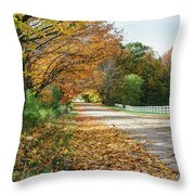 Autumn Road With Fence  Throw Pillow