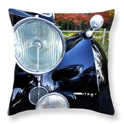 Autumn Rolls Throw Pillow