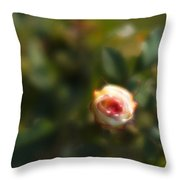 Autumn Rosebud Throw Pillow
