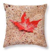 Autumn Sand Throw Pillow