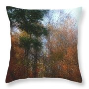 Autumn Scene 10-23-09 Throw Pillow