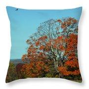 Autumn Scene 2 Throw Pillow
