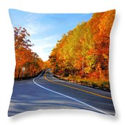 Autumn Scene With Road In Forest 2 Throw Pillow