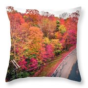 Autumn Season And Color Changing Leaves Season Throw Pillow