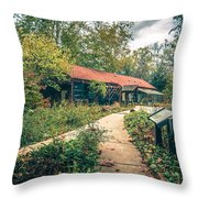 Autumn Season Around Aheville North Carolina Throw Pillow