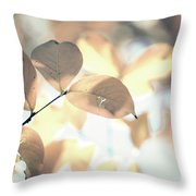 Autumn Season Leaves On A Tree In Sun Light Throw Pillow