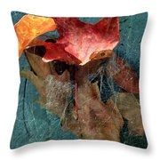 Autumn Seined Throw Pillow