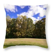 Autumn Skies Throw Pillow