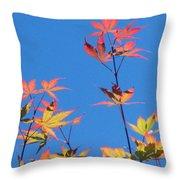 Autumn Skies Throw Pillow