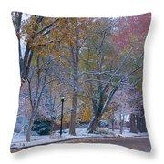 Autumn Snow Throw Pillow