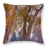 Autumn Snow Park Bench   Throw Pillow by James BO  Insogna