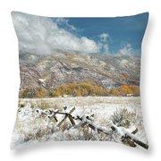 Autumn Snowfall In Aspen Throw Pillow