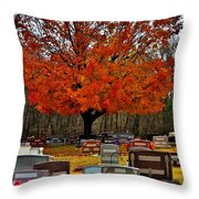 Autumn Somnolence  Throw Pillow