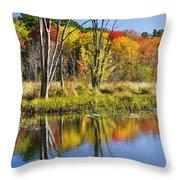 Autumn Splendor - Bolton Flats Throw Pillow