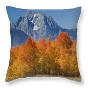 Autumn Splendor In Grand Teton Throw Pillow