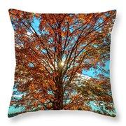 Autumn Star- Paint Throw Pillow