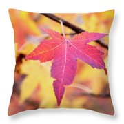 Autumn Still Throw Pillow