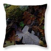 Autumn Still-life Throw Pillow