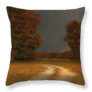 Autumn Storm 4 Throw Pillow