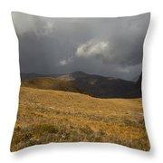 Autumn Storm Throw Pillow