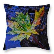 Autumn Stream 2 Throw Pillow