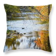 Autumn Stream Reflections Throw Pillow
