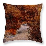Autumn Stroll No23 Throw Pillow