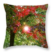 Autumn Sun Throw Pillow