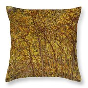 Autumn Sunlight Throw Pillow
